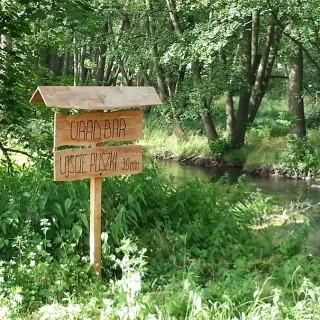 Spływ kajakowy Pliszka ujście rzeki