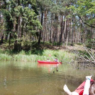 Spływ kajakowy – rzeka Pliszka (lubuskie)